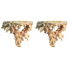 Pair of Faux Coral Wall Brackets/Shelves