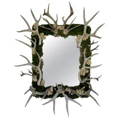 Antler and Preserved Moss Mirror