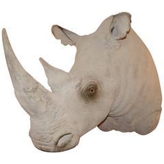 Rhinoceros Head Sculpture in Fiberglass Exceptional Finishing