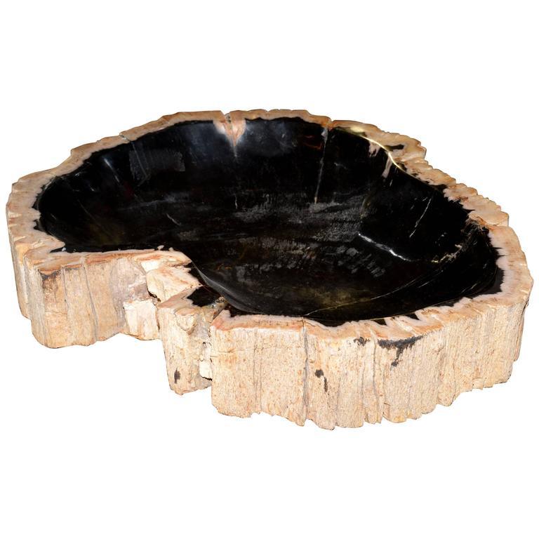 Ashtray in Petrified Wood