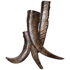 Horns Vase with Real Buffalo Horns