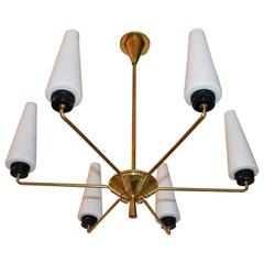 Elegant French Mid-Century Chandelier