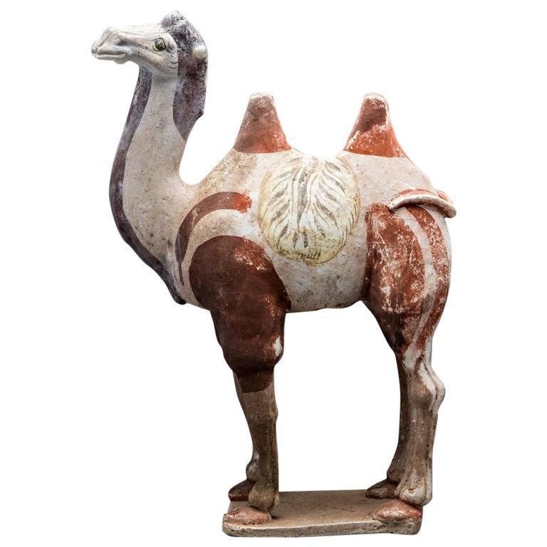 Tang sculpture of a camel at stdibs