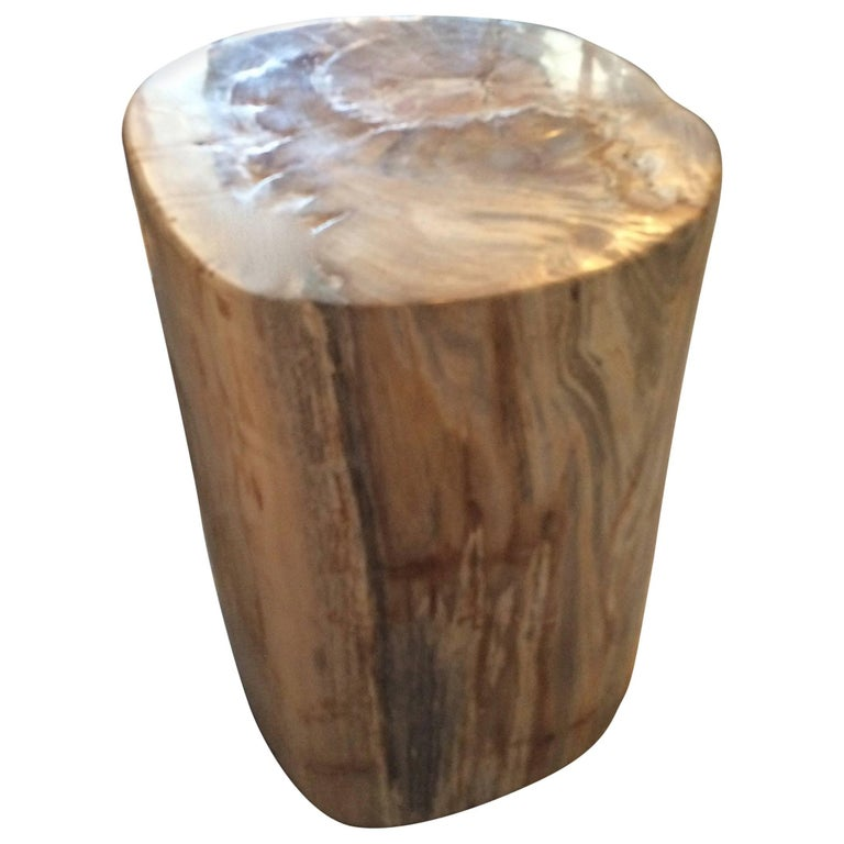 Petrified Wood Side Table or Table Base For Sale