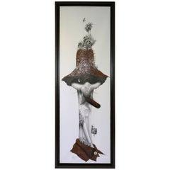 Organic Surrealist Collage by Cuban Artist Velasquez