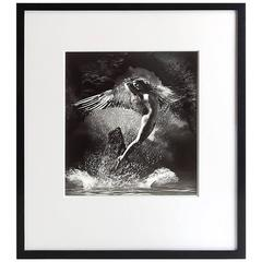 Framed Silver Print Photograph 'The Guardian' by James Porto, 2001