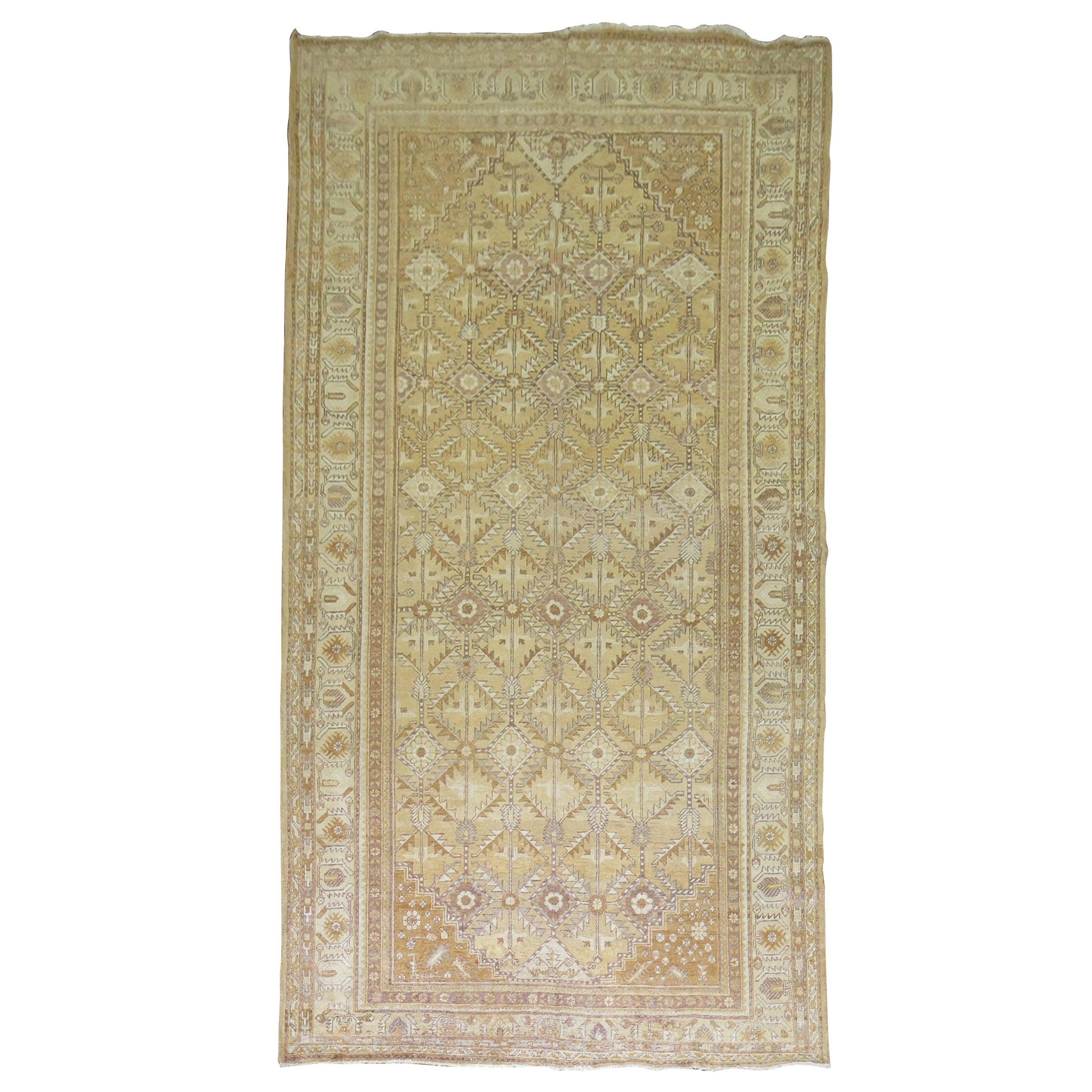 Straw Antique Khotan Rug, Early 20th Century