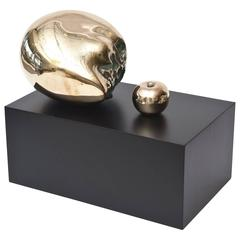 Polished Bronze Skull Head and Apple Sculpture