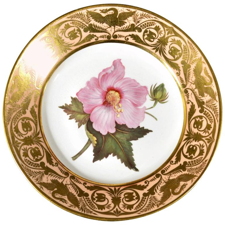 Antique Derby Porcelain Salmon Ground Plate, Marsh Hibiscus, by John Brewer For Sale