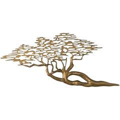 Brass Bonsai Tree After Bijan
