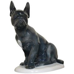 1920s Fraureuth Porcelain French Bulldog Dog
