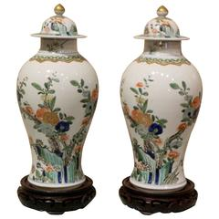 Pair of Chinese Covered Vases with Rosewood Stands, Early 20th Century