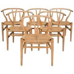Six Wishbone Chairs in Oak by Hans Wegner (CH-24)