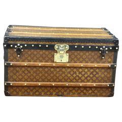 Animal Skin Trunks and Luggage