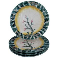 19th Century Josiah Wedgwood Majolica Ocean, Shell and Seaweed Plates, S/4