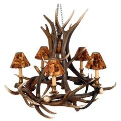 Five Antlers Chandelier Vintage Brass Finish with Partridge Feather Shades