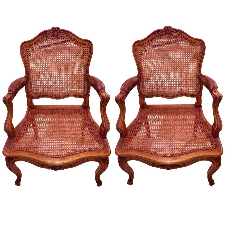 Pair of 19th Century French Louis V Style Fruitwood Armchairs