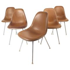 Set of Mid-Century Modern Fiberglass Shell Chairs by Herman Miller