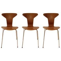 Three Arne Jacobsen Mosquito Chairs in Teak