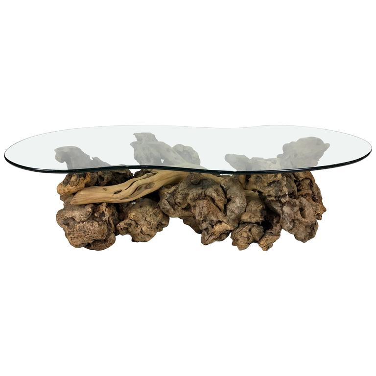 Large Sculptural Driftwood Burl Coffee Table With Free Form Glass Top