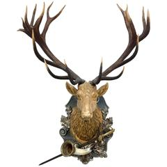 19th Century Habsburg Red Stag Trophy with Hunt Horn & Hunt Sword