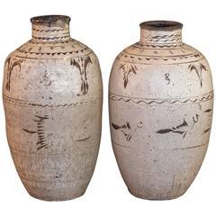 Large 14th-15th Century, Chinese, Cizhou Jars