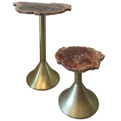Pair of Solid Brass and Petrified Wood Occasional Tables