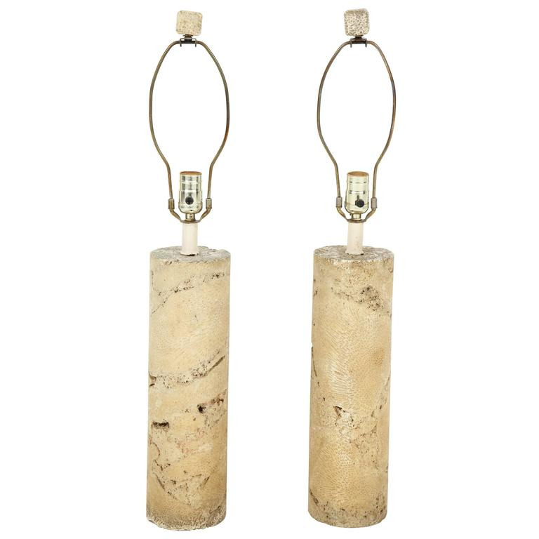 Pair of Fossil Coral Lamps 1
