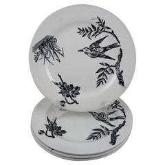 Aesthetic Movement Victorian Transferware Aquatic Pattern Plates, Set of Four