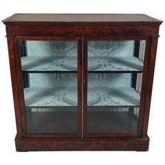 Mid-19th Century Biedermeier Flame Mahogany Two-Door Cabinet Glass Cabinet