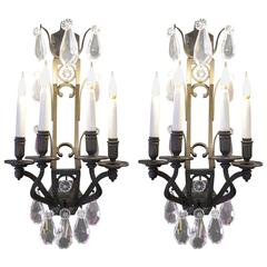Pair of Important Sconces in Bronze with Crystals from the 19th Century