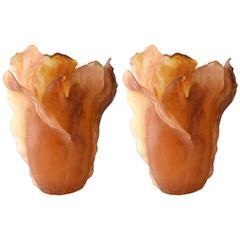 Pair of Large Daum Amber Tulip Vases with Original Boxes