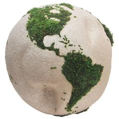 One of a Kind Teak Root Globe or Stabilized Moss - 15.75 in. (40 cm)