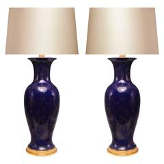 Pair of Powder blue ground Porcelain Lamps