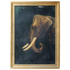 English School Oil on Canvas of an African Elephant Dated to 1906 by E Whiteley