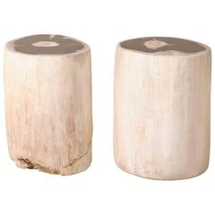 Pair of Sleek Petrified Wood Drink / Side Tables in Cream Color with Black Tops