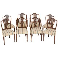 Set of Eight Hepplewhite Influenced Chairs