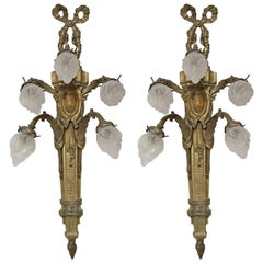 Pair of Early 20th Century Louis XVI Style Sconces