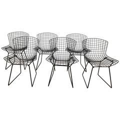 Set of Six Bertoia Dining Chairs