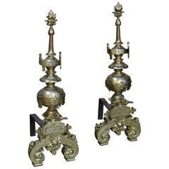 Pair of 19th Century Bronze Andirons with Sea Turtle Motifs