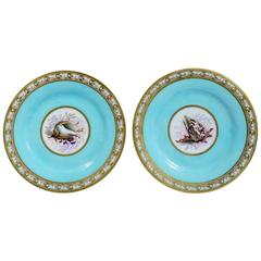 Regency Period Flight, Barr and Barr Worcester Sea-Shell Porcelain Plates