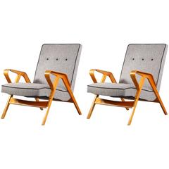 Charming Pair of Armchairs in the Manner of Roland Rainer, 1950