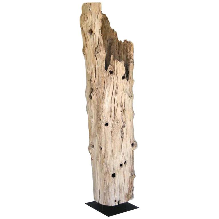 Large Driftwood Tree Trunk Sculpture