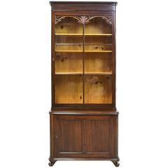 Narrow 19th Century Bookcase or Vitrine with Cabinet in Mahogany, circa 1850