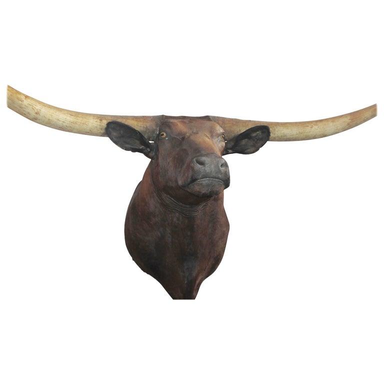 Monumental Texas Longhorn  Mounted Bull For Sale