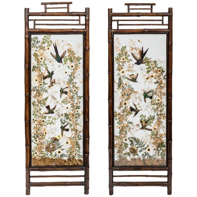 Hummingbird Taxidermy Screens, by Rowland Ward, 19th Century, English For Sale