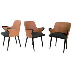 Set of Three Chairs Model P38 by Osvaldo Borsani for Tecno, 1950s