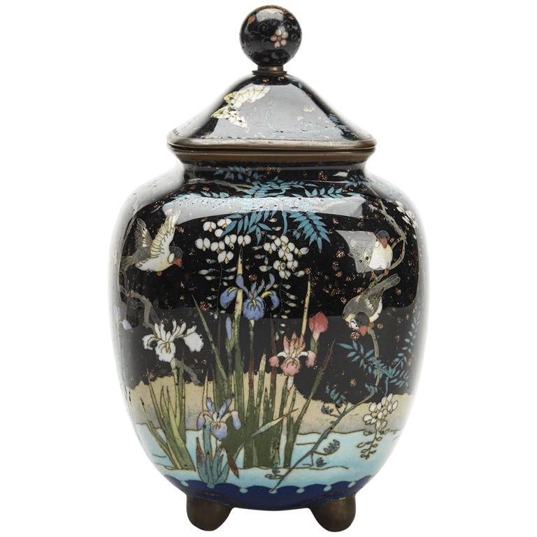 Japanese Meiji Cloisonne Lidded Jar , 19th Century For Sale