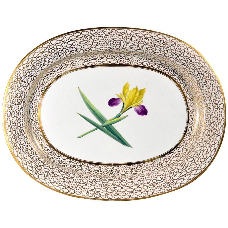 English Chamberlain Worcester Porcelain Large Botanical Specimen Oval Dish