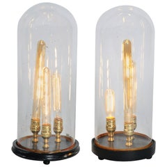 Glass Dome Lights with Wooden Base